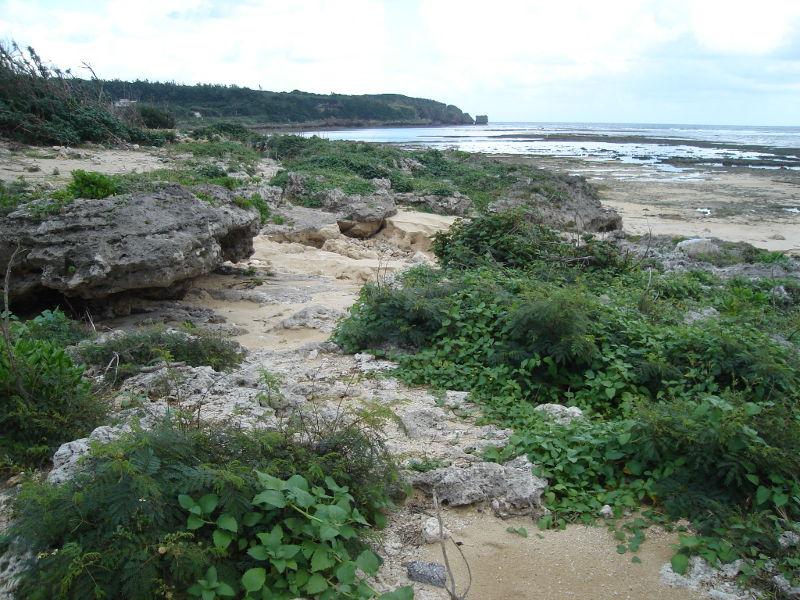 okinawa-beach